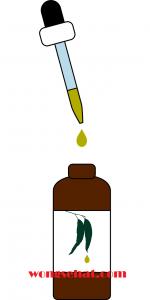 Manfaat Minyak Kayu Putih untuk Kesehatan
