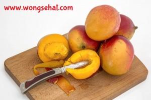 khasiat mangga wongsehat.com