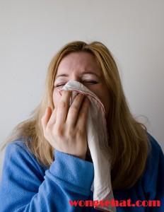 Cara Alami Mengobati Penyakit Sinusitis