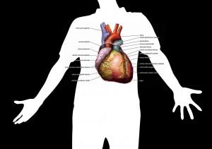 cara mengobati pembengkakan hati secara tradisional