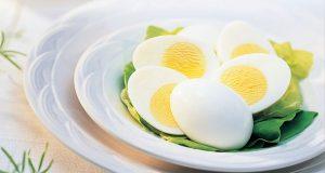 cara diet telur